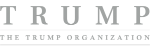 Trump-Org-Grey-Client-Logo-Template.png